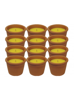 Terracotta pot citronella mini box 12 u /.