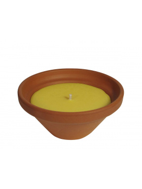 Medium terracotta citronelle Box: 6 unités